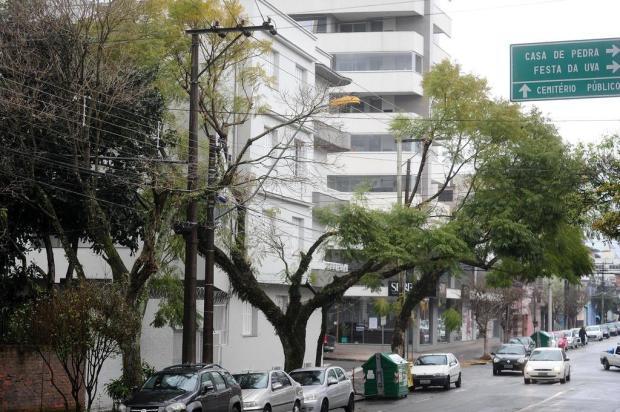 A poda em Caxias do Sul agora mutila jacarandás Diogo Sallaberry/Agencia RBS