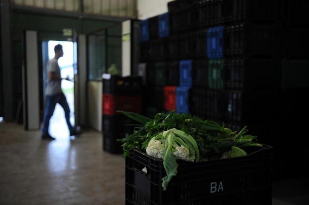 Banco de Alimentos de Caxias pode perder convênio para compra de frutas e verduras Felipe Nyland/Agencia RBS