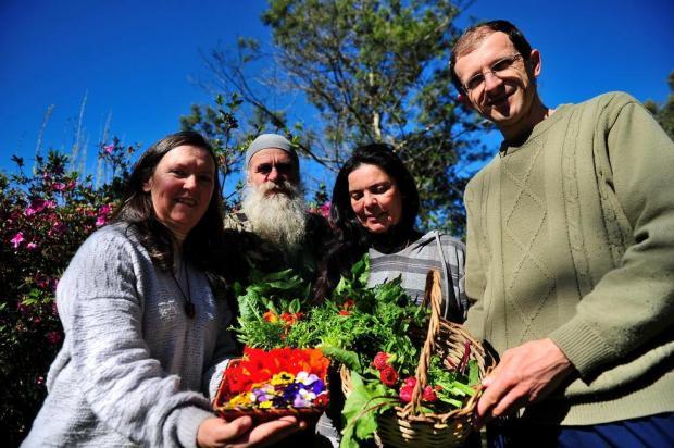 Plantas alimentícias não convencionais aliam benefícios à saúde com preocupação ambiental Diogo Sallaberry/Agencia RBS