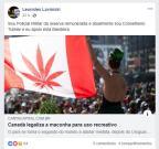 Manifestação de conselheiro tutelar sobre maconha repercute em Bento Gonçalves (Reprodução/)