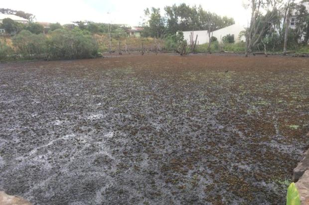 Início de obras em lago de Nova Petrópolis é adiado para semana que vem Robson Reolon/Divulgação