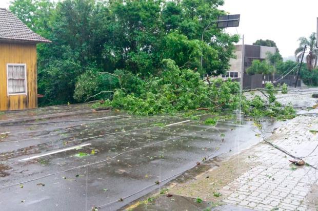 Temporal com vento forte destelha casas e derruba árvores em Caxias e região Marcelo Passarella / Agência RBS/Agência RBS