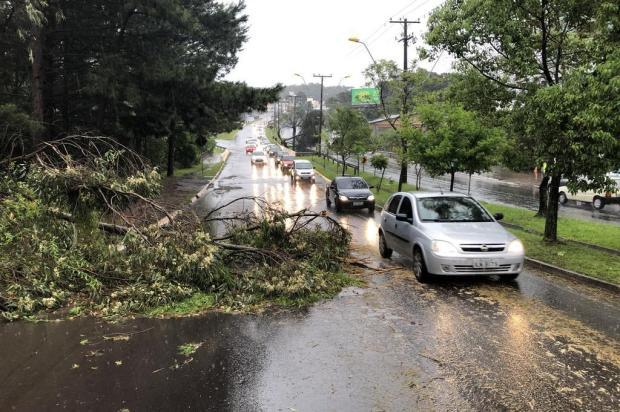 Em oito horas, chuva em Caxias supera um terço da média de todo o mês de outubro Porthus Junior/Agencia RBS