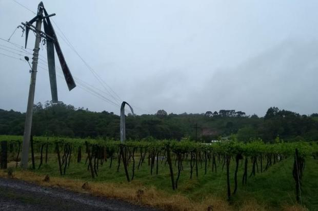 Granizo causa estragos na agricultura em mais de 10 municípios da Serra Douglas Pasuch/Divulgação