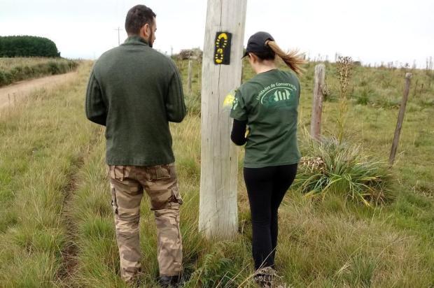 Caminho das Araucárias, na Serra, deve ser entregue no início de 2019 Secretaria do Ambiente e Desenvolvimento Sustentável/Divulgação