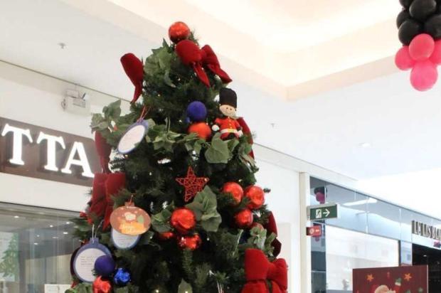 Árvores de Natal ajudam crianças carentes em Caxias Diúlit Bernart Oldoni/Divulgação