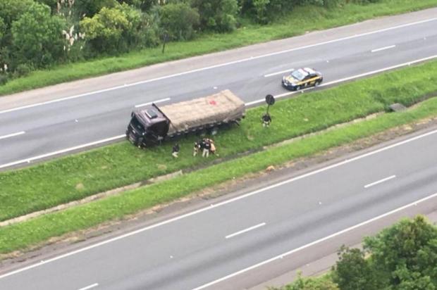 Motorista de Caxias detido em Curitiba após 63km de manobras segue preso Divulgação / PRF/PRF