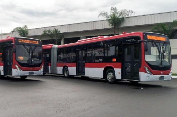 Marcopolo anuncia contrato de exportação de 342 ônibus, um dos maiores da história Gelson Mello da Costa/divulgação