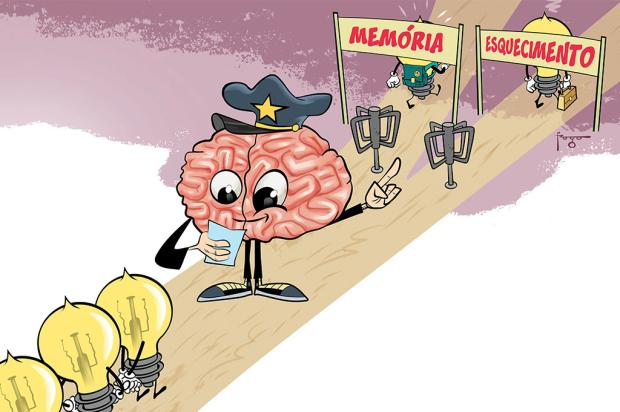O labirinto da memória: esquecer é tão importante quanto lembrar /