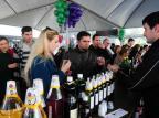 Feira do Vinho será mantida na Praça Dante, em Caxias Roni Rigon/Agencia RBS