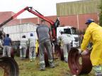 Operação apreende 400 toneladas de sucata automotiva em Caxias do Sul Rodrigo Ziebell/Divulgação