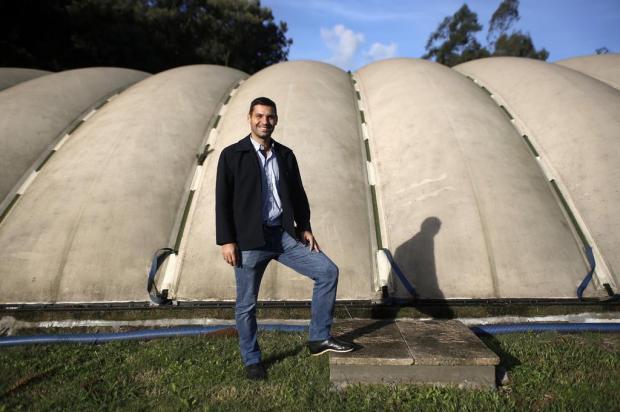 Dejetos de porcos geram toda a luz de granja em Carlos Barbosa Anselmo Cunha/Agência RBS