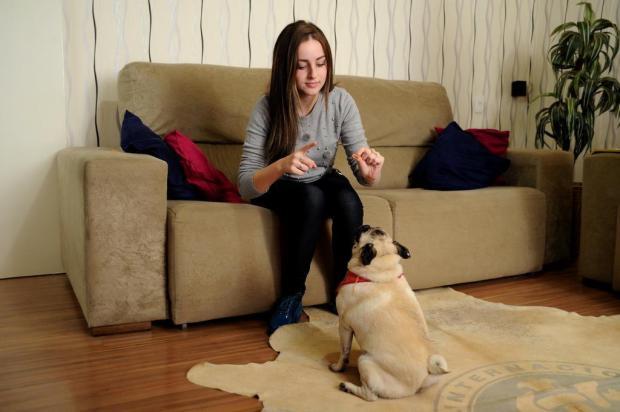 Cachorrinha em Caxias do Sul aprende comandos em Libras para entender os donos Antonio Valiente/Agencia RBS