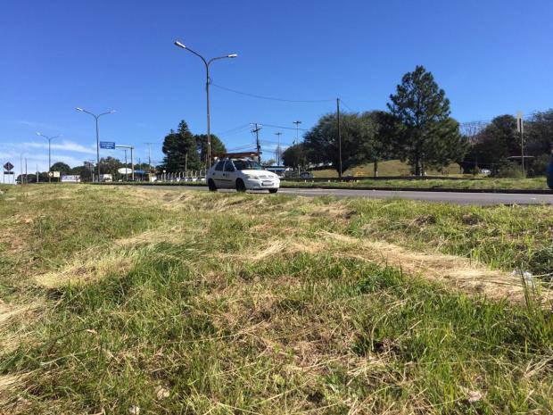 Após atualização de contrato, estradas da Serra recebem pintura e roçada André Fiedler / agência RBS/agência RBS