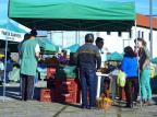 Degustação de citros gera confraternização na Feira Ecológica de Caxias Mateus Frazão/AgenciaRBS