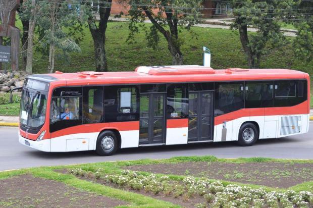 Marcopolo, de Caxias, envia 120 ônibus ao Chile Douglas de Souza Melo/divulgação