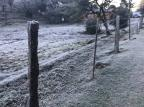 Cidades da Serra registram temperaturas negativas e formação de geada na manhã deste domingo Gerson Sorgetz / Divulgação/Divulgação