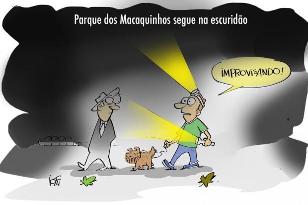 Iotti: prefeitura de Caxias segue sem previsão de consertar iluminação do Parque dos Macaquinhos Iotti/Iotti