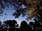 Sexta-feira será ensolarada na Serra Marcelo Casagrande/Agencia RBS