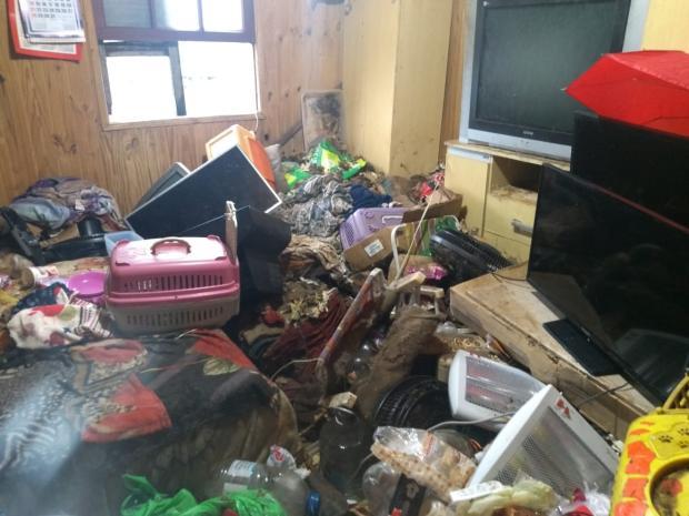 Cães e gatos em situação de maus-tratos são recolhidos em casa de moradora de Caxias Paulo Cesar dos Santos / Prefeitura Caxias do Sul/Prefeitura Caxias do Sul