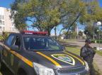 Guarda Civil de Bento Gonçalves deve receber coletes balísticos até outubro Guarda Civil/Divulgação
