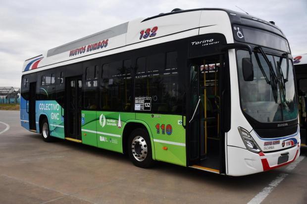 Marcopolo fabrica 1º ônibus a gás natural veicular na Argentina Daniel Orciani/divulgação