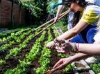 Projeto Girassol organiza programação cultural nesta terça Ramon Munhoz/Divulgação