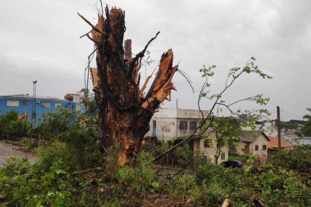 Vento de até 130 km/h atinge Lagoa Vermelha, destelha casas e deixa cidade sem energia elétrica Luciano Andrade / Divulgação/Divulgação