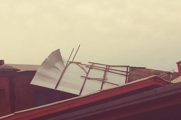 Temporal destelha pelo menos 15 casas em Canela Tatiana de Oliveira Pinto/Divulgação