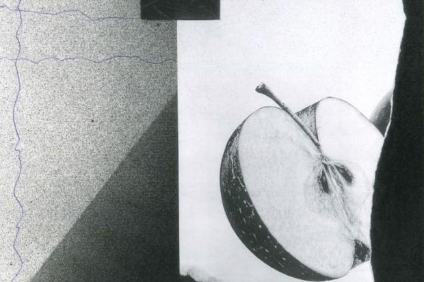 Artista Nicole Martinato abre exposição em Caxias nesta quinta Reprodução/Reprodução