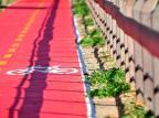 Principal avenida de Flores da Cunha passará por revitalização e terá ciclovia Lívia Stumpf/Especial