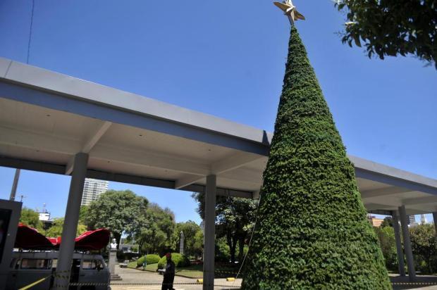 Decoração de Natal começa a ser instalada na prefeitura de Caxias do Sul Lucas Amorelli/Agencia RBS
