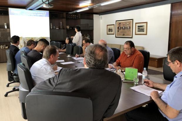Indústria puxa o crescimento de outubro em Caxias Marta Guerra Sfreddo/Divulgação