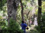 Praça Dante Alighieri, em Caxias, recebe melhorias nos primeiros dias da nova administração Marcelo Casagrande/Agencia RBS