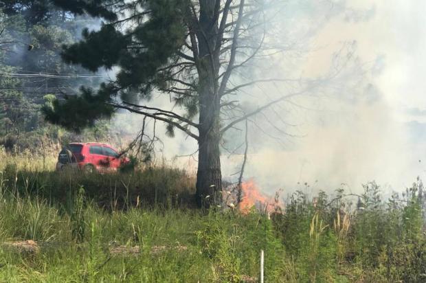 Calor aumenta risco de incêndios e bombeiros fazem alerta na Serra Diego Mandarino / Agência RBS/Agência RBS