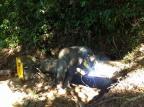 Após falta de água no final de ano, prefeitura de Guaporé cobra investimentos da Corsan Corsan / Divulgação/Divulgação