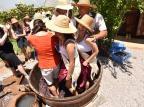La Prima Vendemmia reúne 20 mil pessoas no primeiro final de semana, em Nova Roma do Sul Juliane Tonin / Divulgação/Divulgação