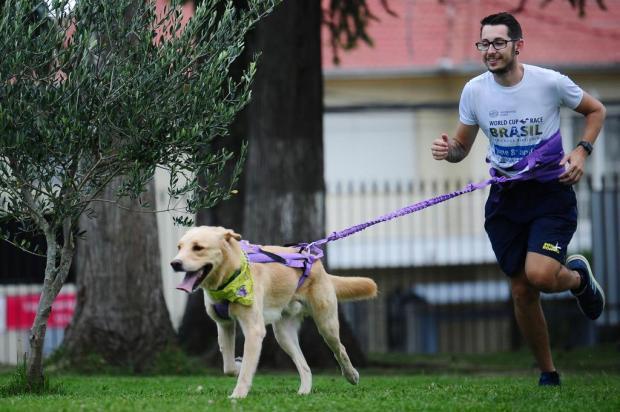 Canicross: a paixão pelos cães ampliada através do esporte Porthus Junior/Agencia RBS