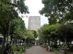 Previsão é de tempo instável nesta quarta-feira na Serra Lucas Amorelli/Agencia RBS