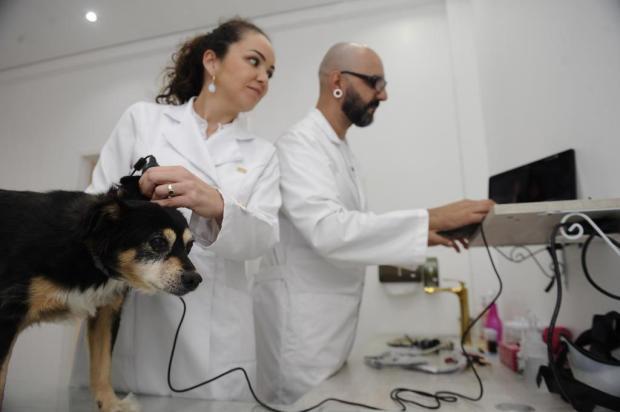 Conheça o primeiro consultório da Serra voltado a problemas dermatológicos de cães e gatos Antonio Valiente/Agencia RBS