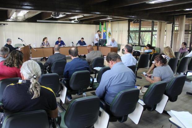 Câmara de Caxias do Sul terá sessões somente duas vezes por semana até o final do mês Gabriela Bento Alves/Divulgação