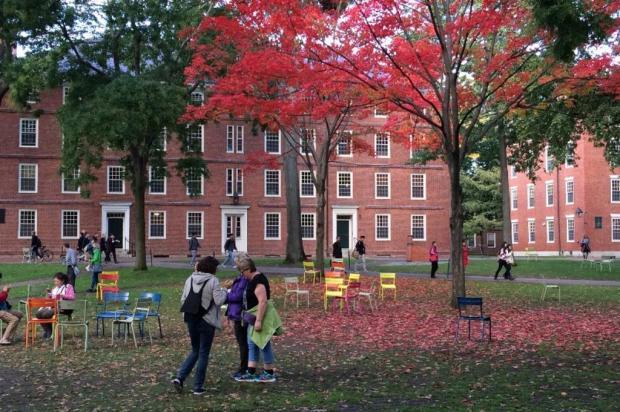 Já pensou em ter um diploma de Harvard? Veja como... Harvard/Divulgação