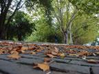 Fim de semana de Páscoa será de temperaturas amenas na Serra Roni Rigon/Agencia RBS