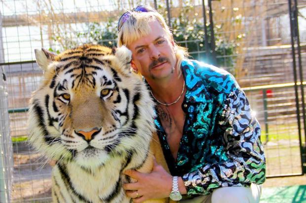 """Saiba mais sobre a série """"A Máfia dos Tigres"""", um dos maiores sucessos recentes da Netflix Divulgação/Netflix"""