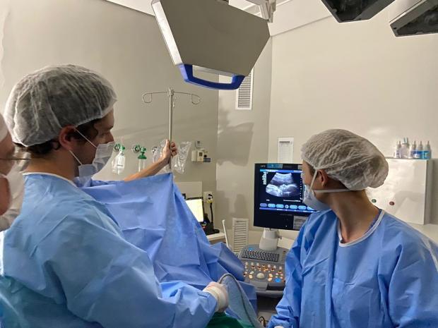 Bebê de família caxiense passa por transfusão rara e gestação é prolongada Hospital Moinhos de Vento / Divulgação/Divulgação