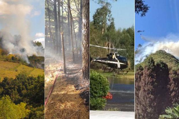 Incêndios de grandes proporções em vegetação foram registrados em quatro cidades da Serra Divulgação / 5º Batalhão de Bombeiros Militar/5º Batalhão de Bombeiros Militar