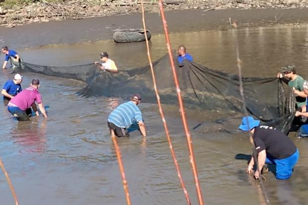 Agricultor doa 200 quilos de peixe para a prefeitura de Caxias do Sul Luciano Stecanela/Divulgação