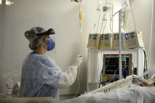 Recuperados do coronavírus são convidados a doar plasma no Hemocentro de Caxias Andréia Copini/SMS/Divulgação