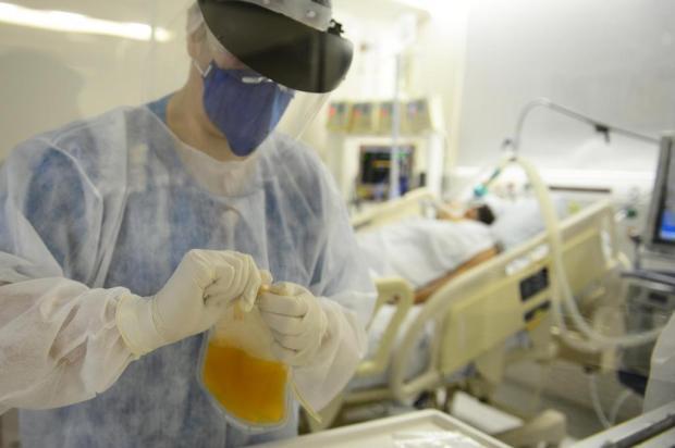 Hospital de Caxias do Sul realiza duas novas transfusões de plasma convalescente Andréia Copini/Secretaria Municipal da Saúde