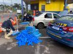 Casal é flagrado com 300 quilos de maconha em porta-malas de carro, em Farroupilha PRF / Divulgação/Divulgação